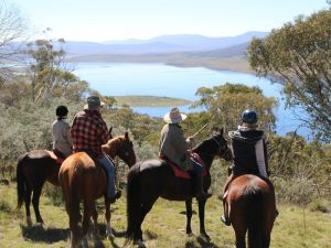 Reynella Homestead and Horseback Rides - Casino Accommodation
