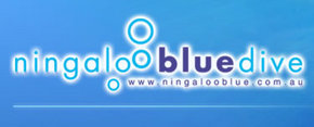 Ningaloo Blue Dive - Casino Accommodation