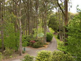 Mount Lofty Botanic Garden - Casino Accommodation