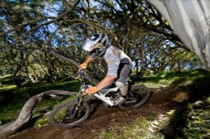 All Terrain Cycles - Casino Accommodation