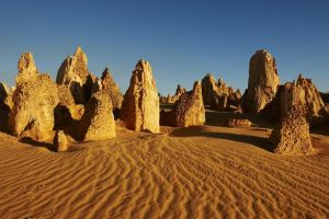 Pinnacles Day Trip from Perth Including Yanchep National Park - Casino Accommodation